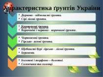 Характеристика ґрунтів України - лучні та лучно- болотні.