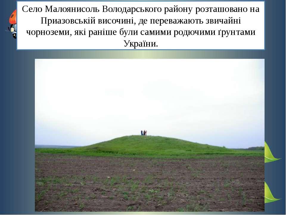 Село Малоянисоль Володарського району розташовано на Приазовській височині, д...