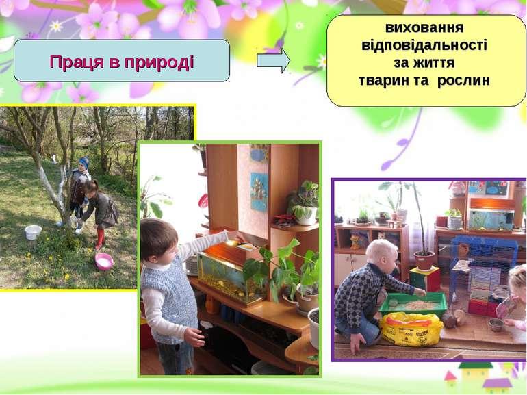 Праця в природі виховання відповідальності за життя тварин та рослин