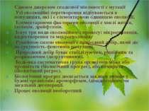 Єдиним джерелом спадкової мінливості є мутації Усі еволюційні перетворення ві...