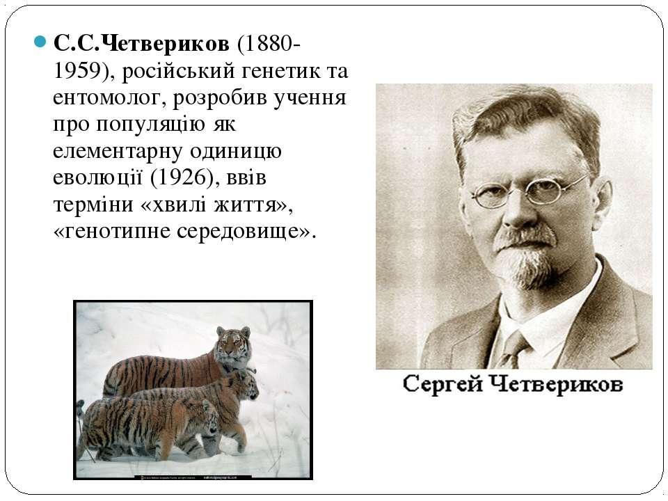 С.С.Четвериков (1880-1959), російський генетик та ентомолог, розробив учення ...