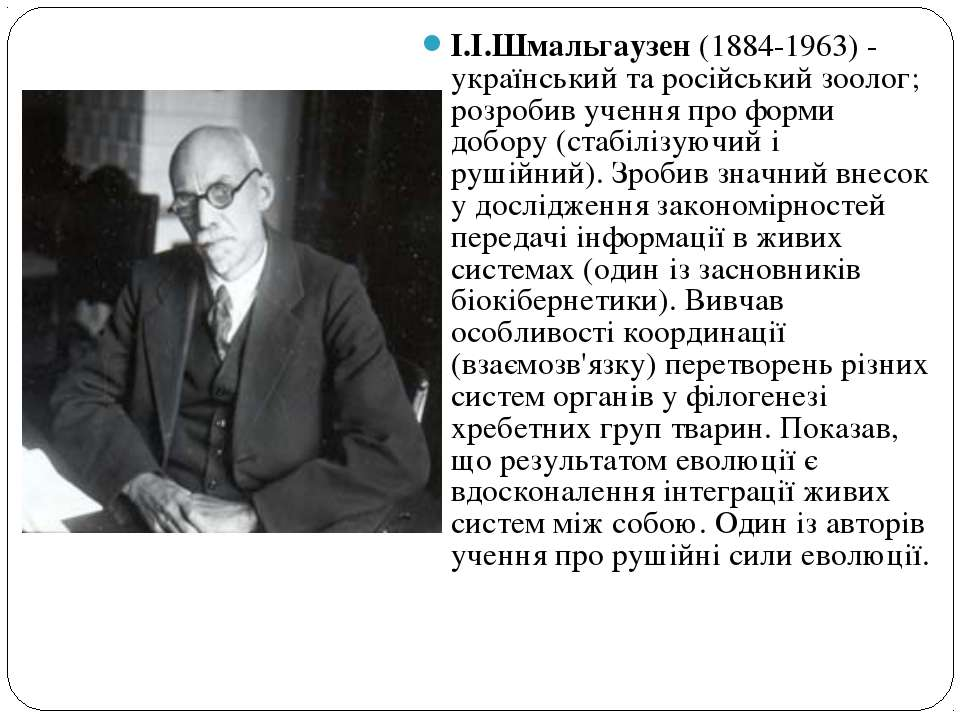 І.І.Шмальгаузен (1884-1963) - український та російський зоолог; розробив учен...