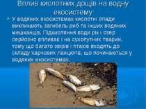 Вплив кислотних дощів на водну екосистему У водяних екосистемах кислотні опад...