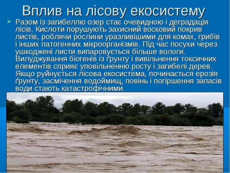 Вплив на лісову екосистему Разом із загибеллю озер стає очевидною і деградаці...