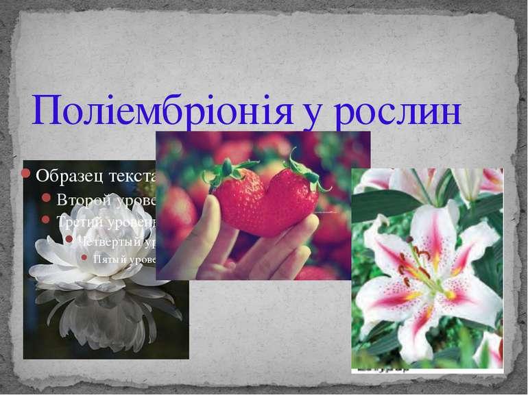 Поліембріонія у рослин