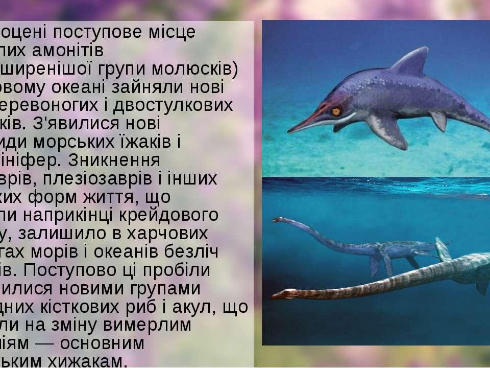 У палеоцені поступове місце вимерлих амонітів (найпоширенішої групи молюсків)...