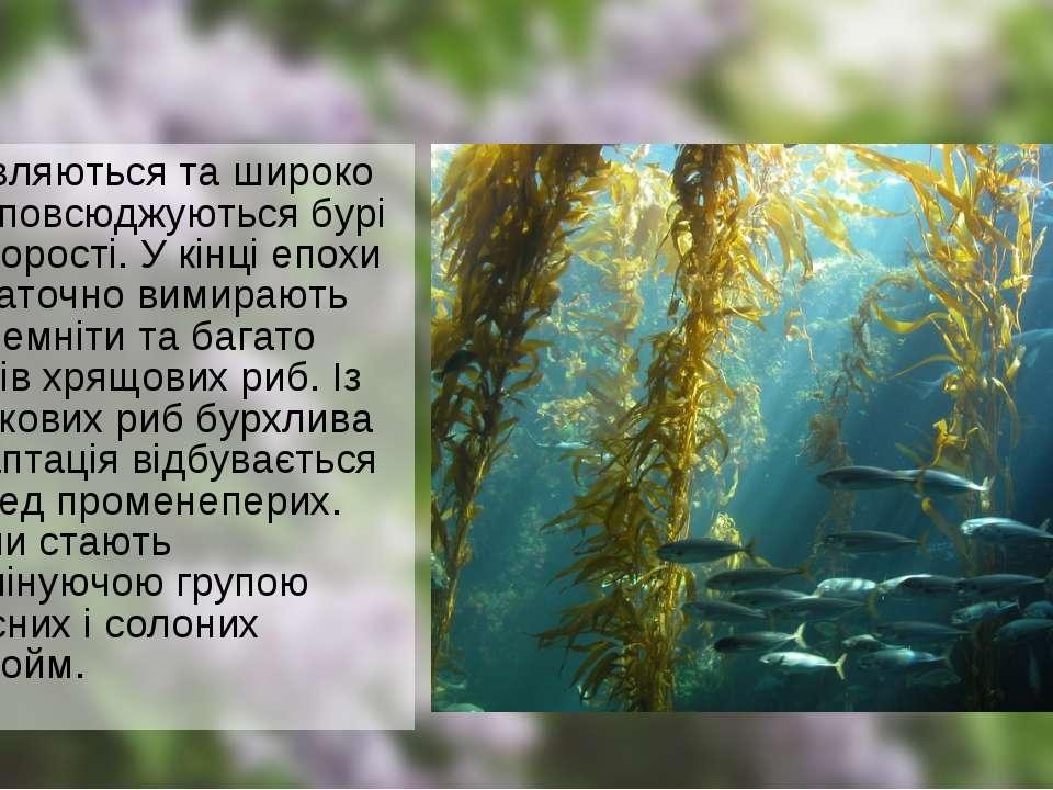 З'являються та широко розповсюджуються бурі водорості. У кінці епохи остаточн...