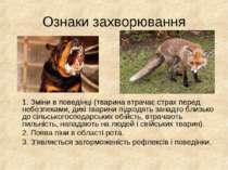Ознаки захворювання 1. Зміни в поведінці (тварина втрачає страх перед небезпе...