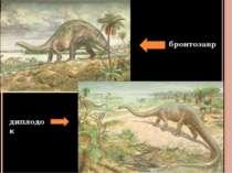 бронтозавр диплодок