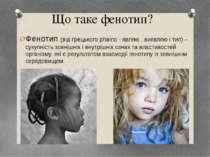 Що таке фенотип? Фенотип (від грецького phaino - являю , виявляю і тип) – сук...