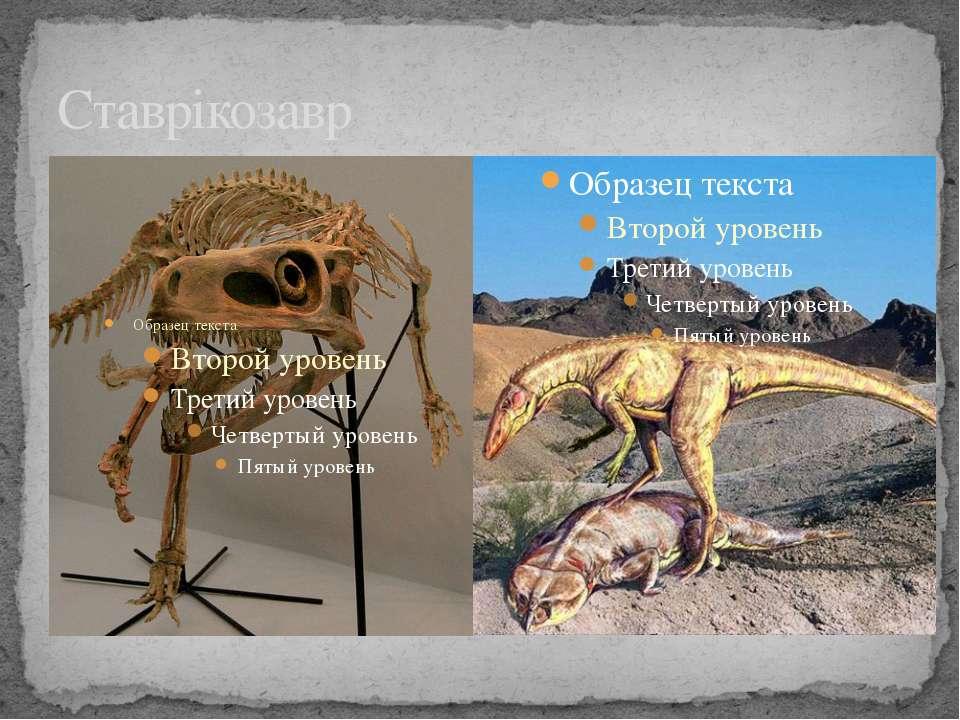 Ставрікозавр