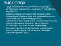 ВИСНОВОК Представники: вольвокс, колоніальні  радіолярії, аплізіатоксин, ана...