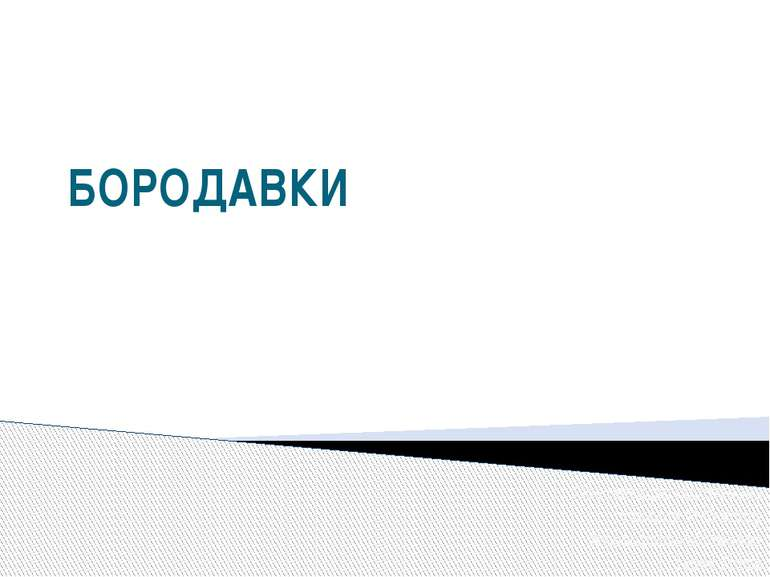 БОРОДАВКИ Презентацію підготувала учениця 11-В класу Кузнецовської гімназії Т...