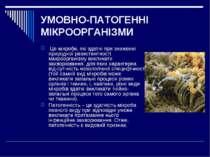 УМОВНО-ПАТОГЕННІ МІКРООРГАНІЗМИ Це мікроби, якіздатні призниженні природно...