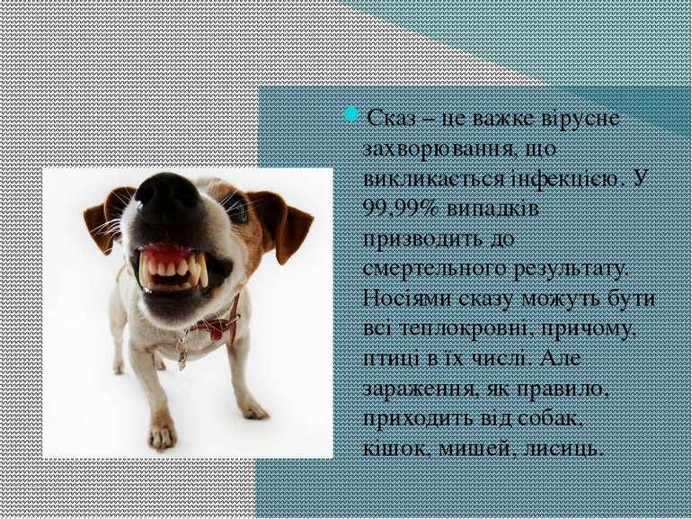 Сказ – це важке вірусне захворювання, що викликається інфекцією. У 99,99% вип...