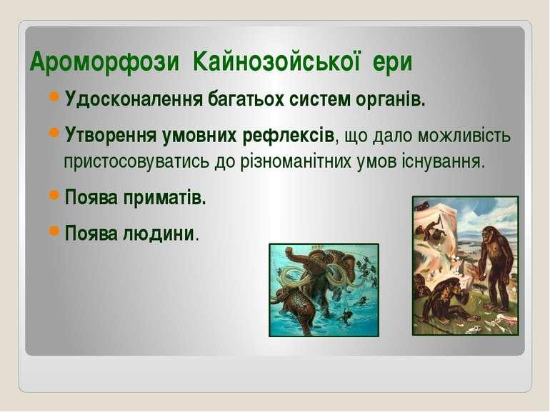 Ароморфози Кайнозойської ери Удосконалення багатьох систем органів. Утворення...