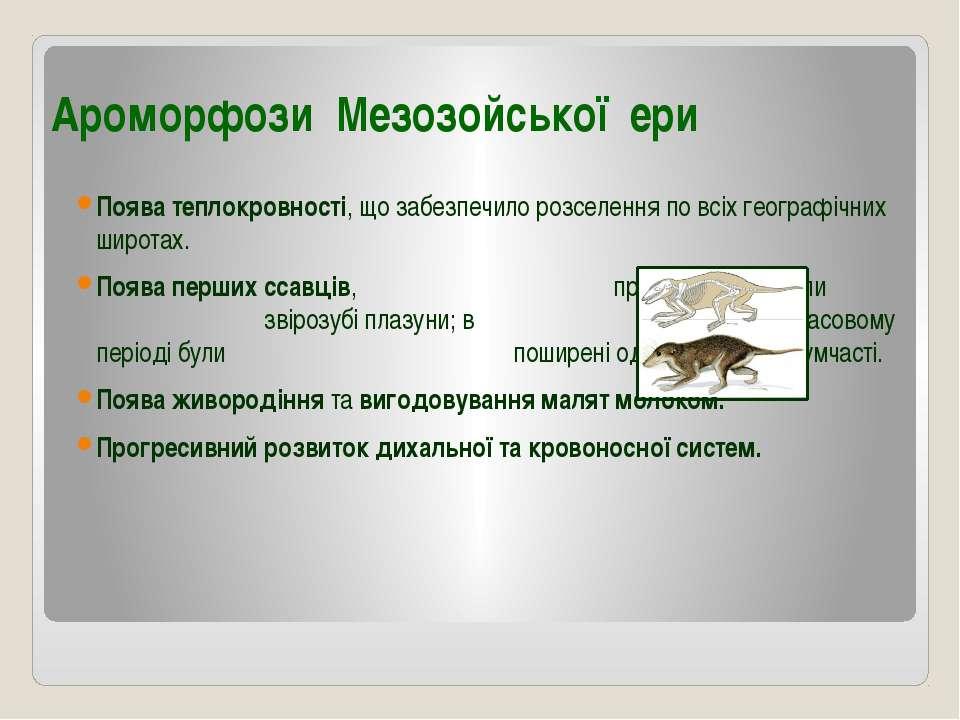 Ароморфози Мезозойської ери Поява теплокровності, що забезпечило розселення п...