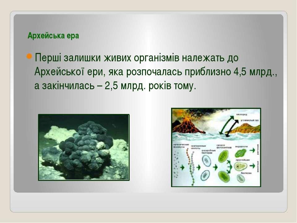 Архейська ера Перші залишки живих організмів належать до Архейської ери, яка ...