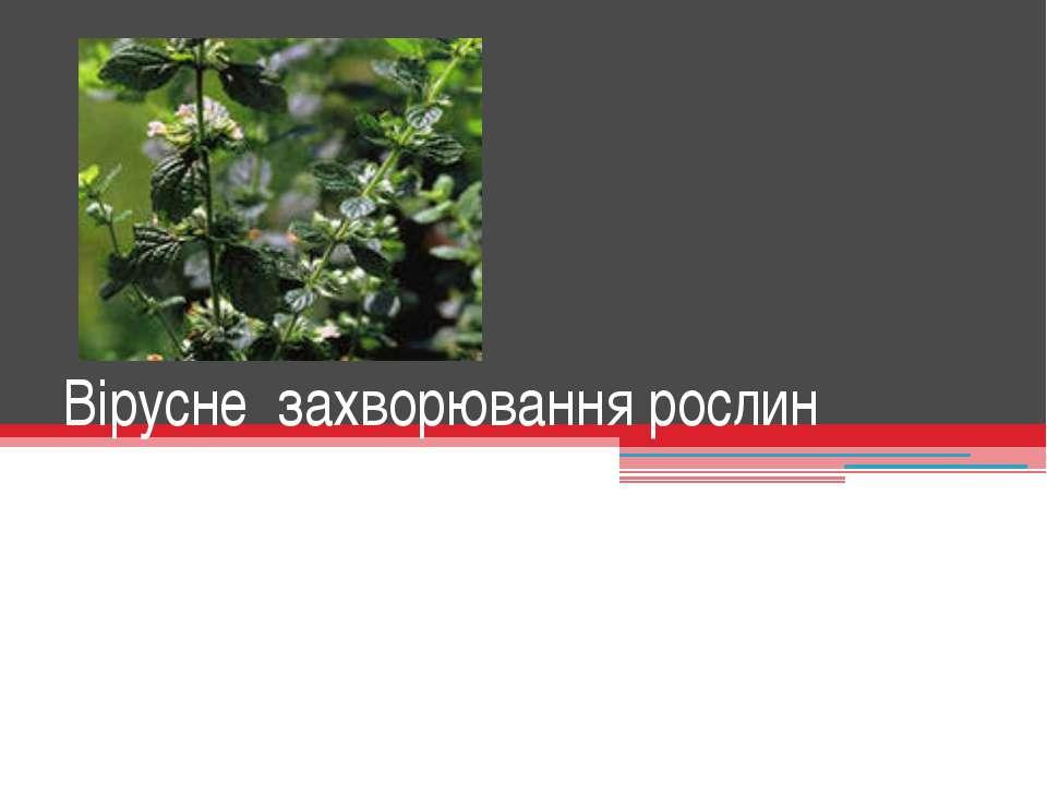 Вірусне захворювання рослин