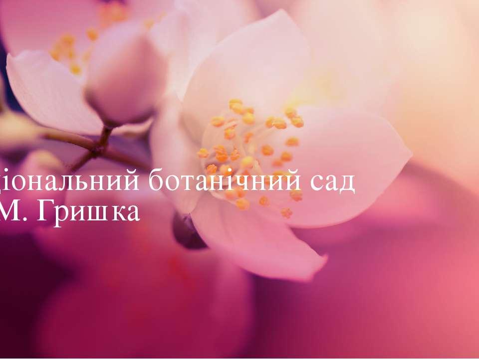 Національний ботанічний сад ім. М. Гришка