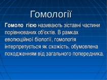 Гомології Гомоло гією називають зіставні частини порівнюваних об'єктів. В рам...