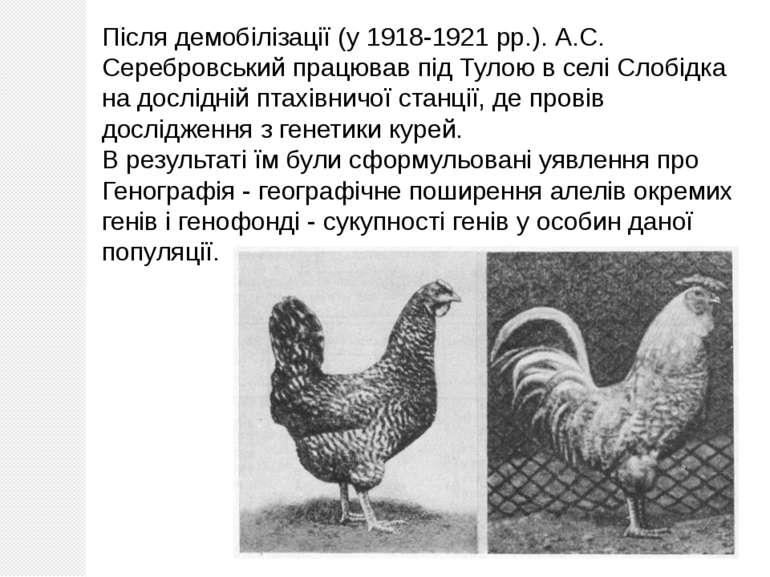 Після демобілізації (у 1918-1921 рр.). А.С. Серебровський працював під Тулою ...