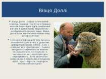 Вівця Доллі - перше клонований ссавець тварина , що було отримано шляхом пере...
