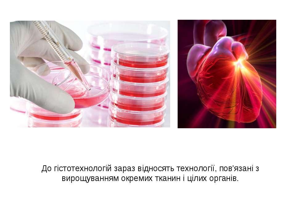До гістотехнологій зараз відносять технології, пов'язані з вирощуванням окрем...