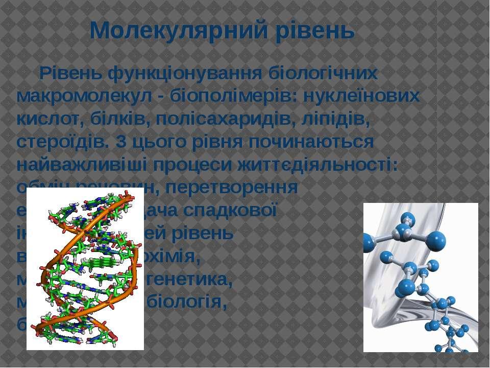 Рівень функціонування біологічних макромолекул - біополімерів: нуклеїнових ки...