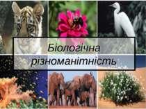 Біологічна різноманітність