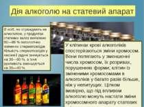 Дія алкоголю на статевий апарат В осіб, які страждають на алкоголізм, у проду...
