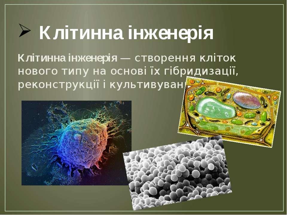 Клітинна інженерія Клітинна інженерія — створення кліток нового типу на основ...