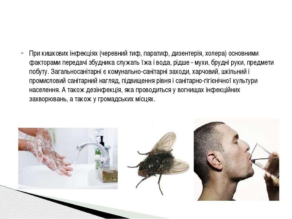 При кишкових інфекціях (черевний тиф, паратиф, дизентерія, холера) основними ...
