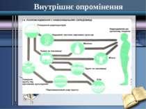 Внутрішнє опромінення Внутрішнє опромінення - опромінювання тіла людини та ок...