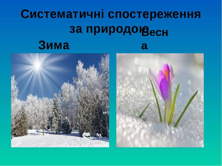 Систематичні спостереження за природою Зима Весна