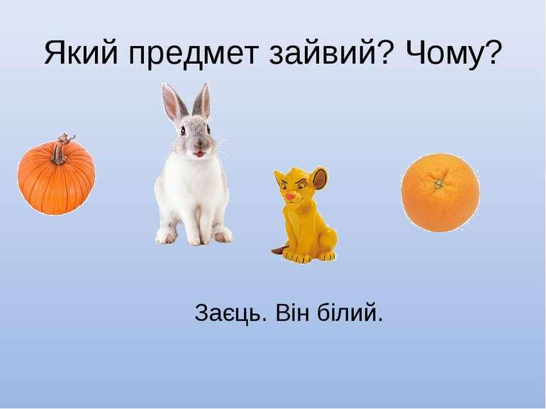 Який предмет зайвий? Чому? Заєць. Він білий.