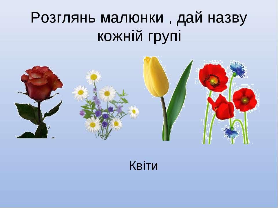 Розглянь малюнки , дай назву кожній групі Квіти