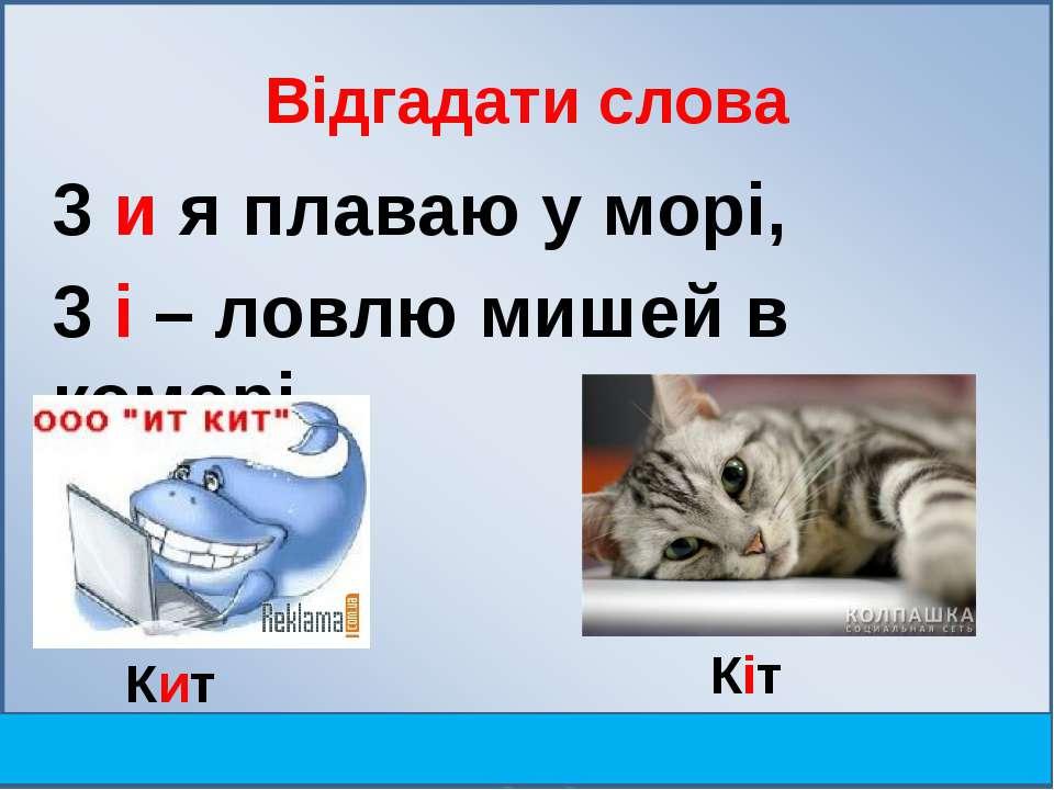 Відгадати слова 3 и я плаваю у мopi, 3 i – ловлю мишей в комopi. Кит Кіт