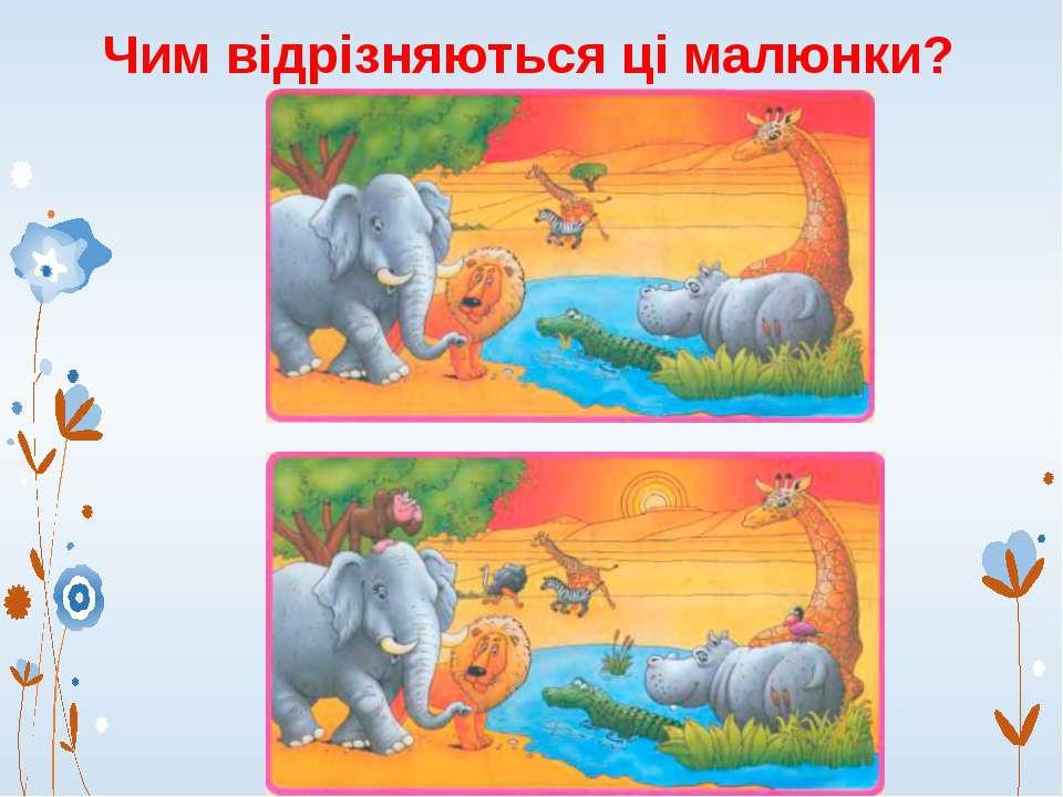 Чим відрізняються ці малюнки?