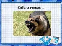 Собака гавкає…