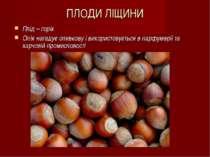 ПЛОДИ ЛІЩИНИ Плід – горіх Олія нагадує оливкову і використовується в парфумер...