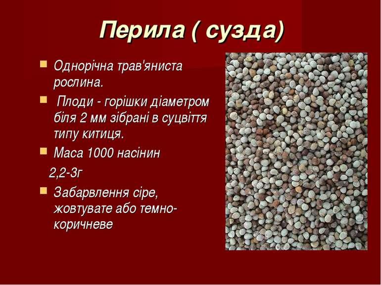 Перила ( сузда) Однорічна трав'яниста рослина. Плоди - горішки діаметром біля...
