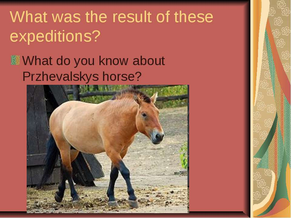 What was the result of these expeditions? What do you know about Przhevalskys...