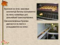 Выезжая из печи, красивые золотистые батоны скатываются на ленту конвейера дл...