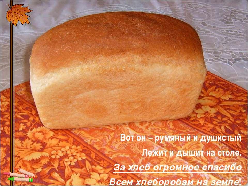 Вот он – румяный и душистый Лежит и дышит на столе. За хлеб огромное спа...