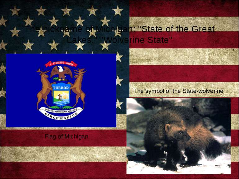 "The nickname of Michigan: ""State of the Great Lakes,"" ""Wolverine State"" Flag ..."
