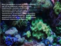 Мета: формувати в учнів основні поняття про об'єм, пластику, форму, фактуру; ...