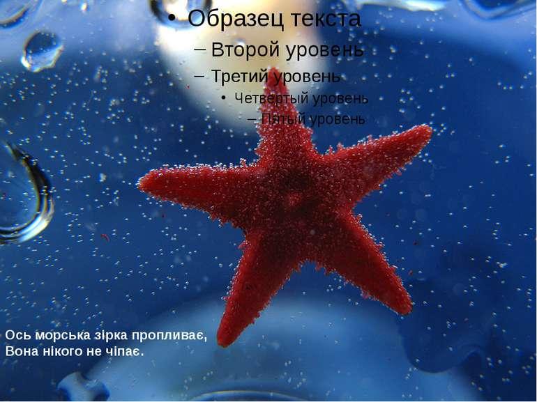 Ось морська зірка пропливає, Вона нікого не чіпає.