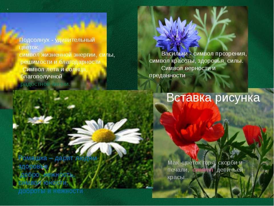 Мак -цветок горя, скорби и печали, символ девичьей красы.. Подсолнух - удивит...