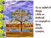 Ти не падав од вітру, з біди не безволів, не насунув на душу ганьби козирок